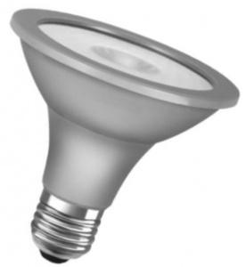 LED-SUPERSTAR-PAR30-100-ADV