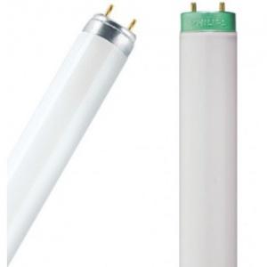T8 Fluorescent Tubes